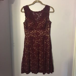 Dress Barn knee length, burgundy lace dress